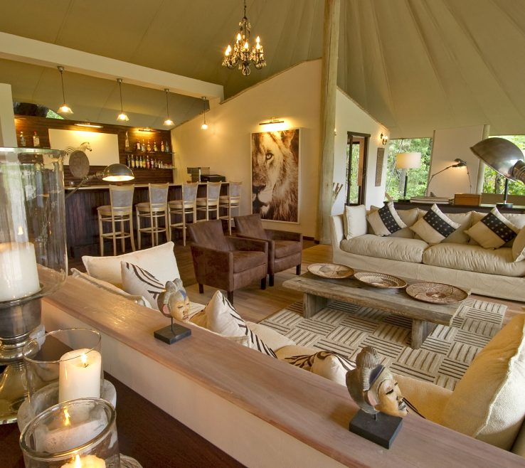 Picturesque Safari Themed Living Room Of Style Mixes Decor And Adventure Earnest