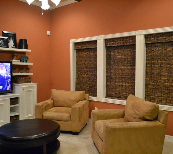 Orange Living Room Ideas Acnn Decor