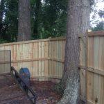 Vanity Beautiful Wood Fences