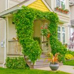 Vanity Flower Arrangements For Front Door Of Twining Ivy On Symmetrical Posts And Railings