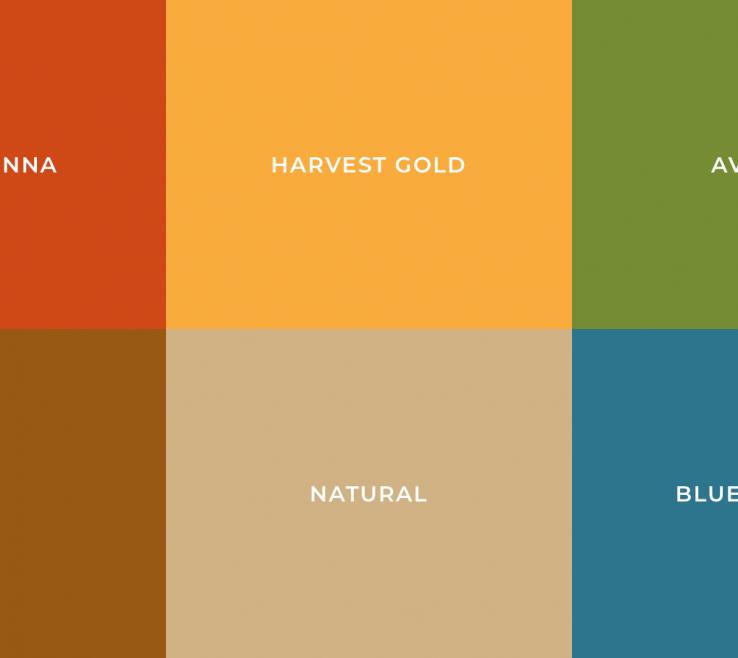 Captivating Color Palette Orange Of S