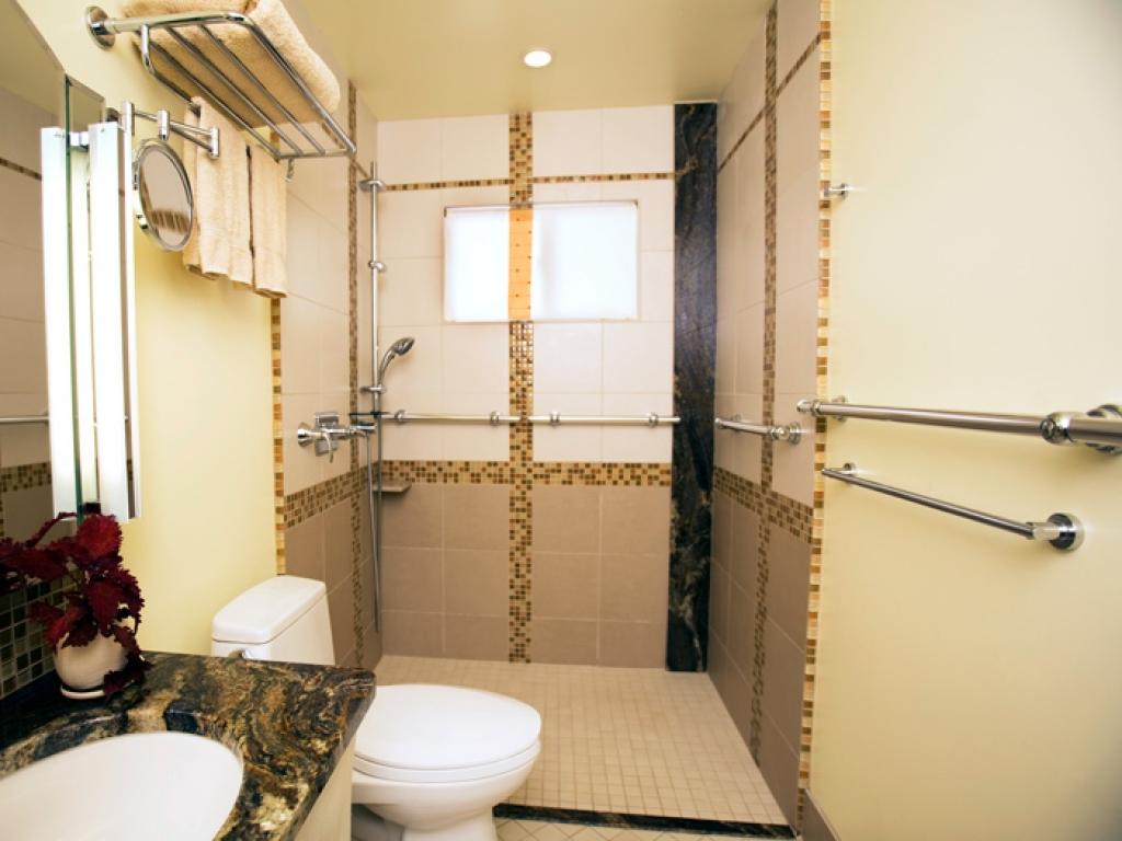 Handicap Bathroom Ideas Acnn Decor