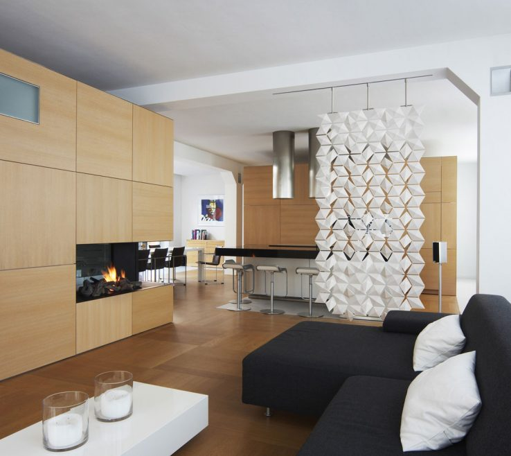 Entrancing Dividers For Living Room