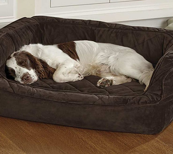 Picturesque Beautiful Dog Beds Of Orvis Tempurpedic Deep Dish Bed Tempurpedic Cloud