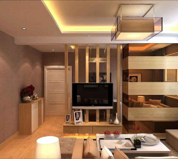 Wonderful Dividers For Living Room Of Partition Interior Design Tv Wall Partition