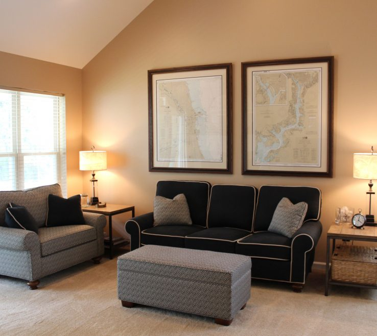 Wonderful Paint For Living Room Colors Of Roompictures Of Color Schemes Blue Gray Scheme